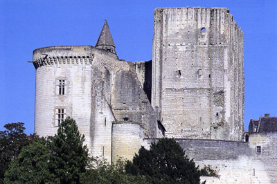 Donjon  holidays rental house at loches